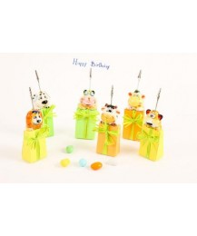 Photo Clip Birthday Favour