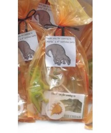 Dinosaurs personalised party bags